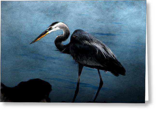 Ocean Art Photography Greeting Cards - Great Blue On The Rocks Greeting Card by Barbara Chichester