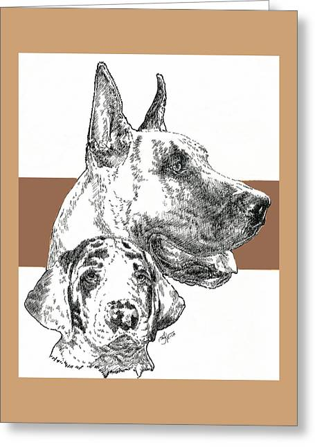 Working Dog Greeting Cards - Great Dane Cropped Greeting Card by Barbara Keith