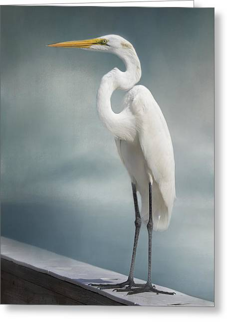 White River Greeting Cards - Great Egret Greeting Card by Kim Hojnacki