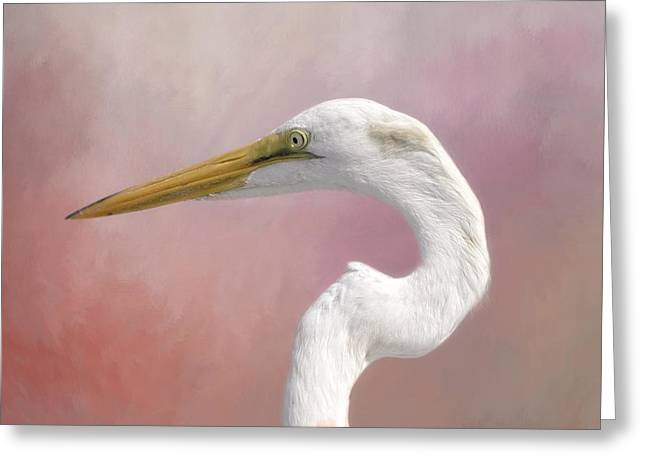 White River Greeting Cards - Great Egret Profile Greeting Card by Kim Hojnacki