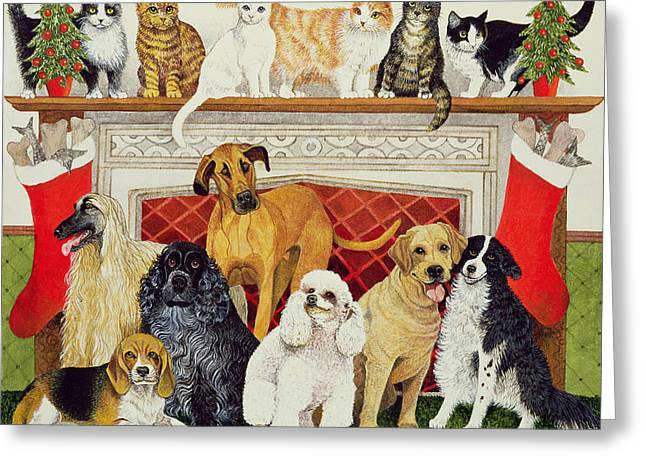Cats And Dogs Greeting Cards - Great Expectations Greeting Card by Pat Scott