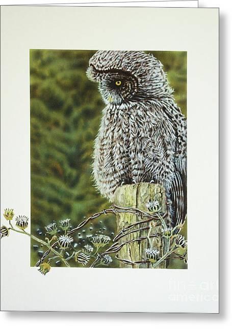 Avian Art Greeting Cards - Great Grey Owl Greeting Card by Greg Halom