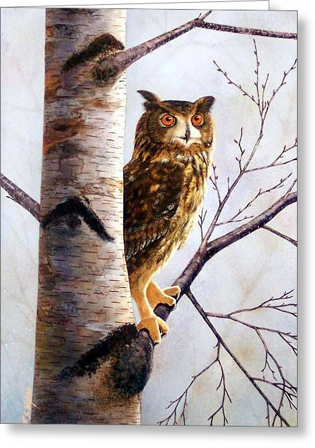 Great Birds Greeting Cards - Great Horned Owl In Birch Greeting Card by Frank Wilson