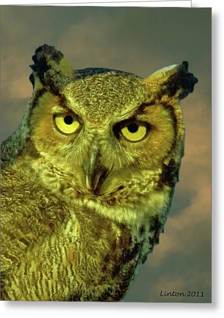 Great Birds Greeting Cards - Great Horned Owl Portrait Greeting Card by Larry Linton
