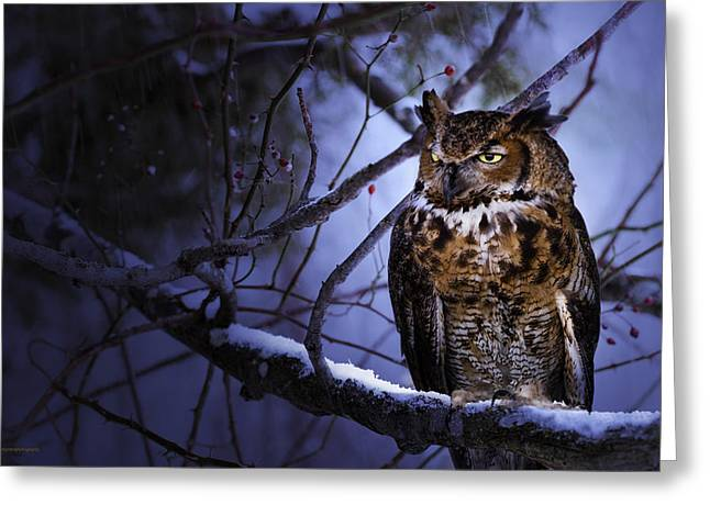 Great Horned Greeting Card by Ron Jones
