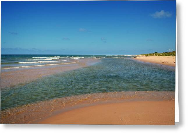 Ludington State Park Greeting Cards - Great Lakes Sandbar Greeting Card by Michelle Calkins