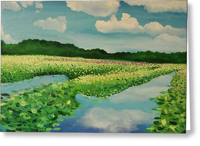 Great Meadows Greeting Card by Sarah Iwany