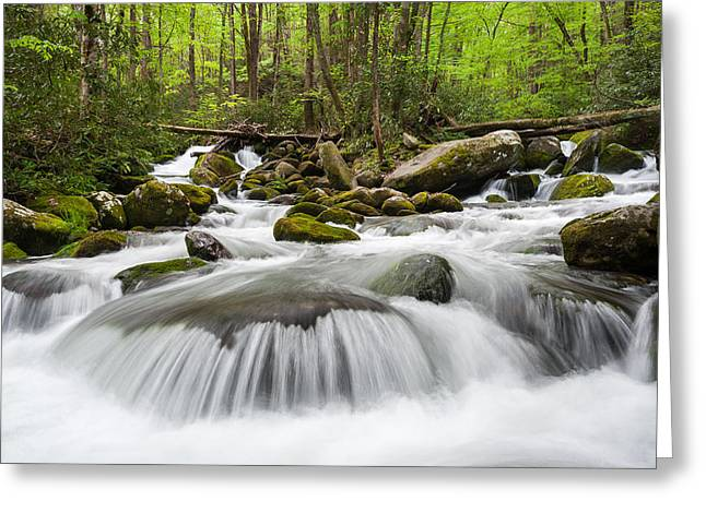 Gatlinburg Tennessee Greeting Cards - Great Smoky Mountain Roaring Fork Spring Cascade Greeting Card by Mark VanDyke