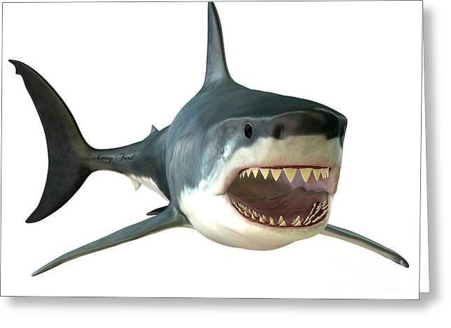 White Shark Greeting Cards - Great White Shark Mouth Greeting Card by Corey Ford