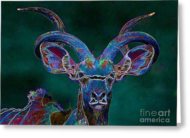 Transformations Digital Greeting Cards - Greater Kudu - Male - Transformed Greeting Card by Warren Sarle