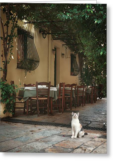 Greek Streets - Corfu Greeting Card by Cambion Art