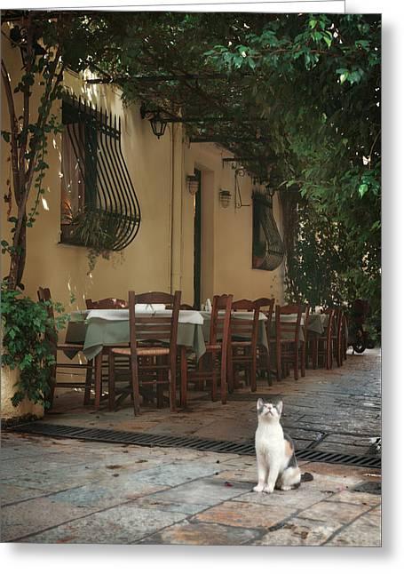 Sitting Photographs Greeting Cards - Greek streets - Corfu Greeting Card by Wojciech Zwolinski