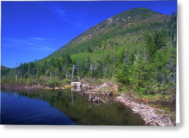 Greeley Greeting Cards - Greeley Pond Greeting Card by John Burk