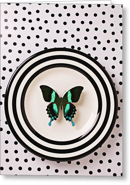 Invertebrates Photographs Greeting Cards - Green and black butterfly on plate Greeting Card by Garry Gay