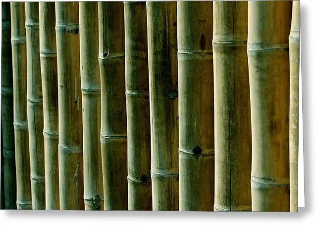 Fitting Room Greeting Cards - Green bamboo Greeting Card by Heike Hultsch