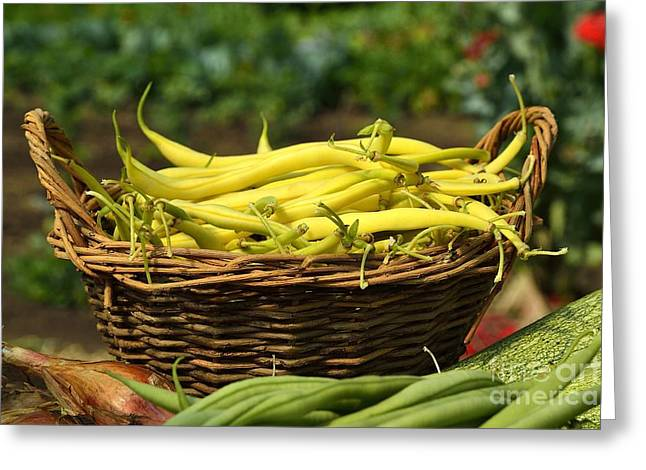 Green Beans Greeting Cards - Green beans harvest 2 Greeting Card by Joel Douillet
