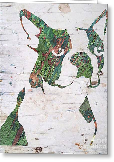 Boston Terrier Framed Prints Greeting Cards - Moss Boston Greeting Card by B Campbell