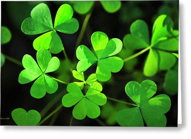 Green Clover Greeting Card by Christina Rollo