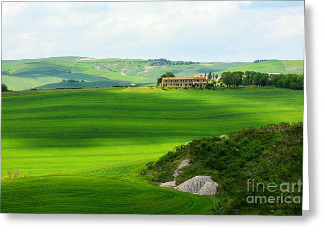 Italian Sunset Greeting Cards - Green escape in Tuscany Greeting Card by Ramona Matei