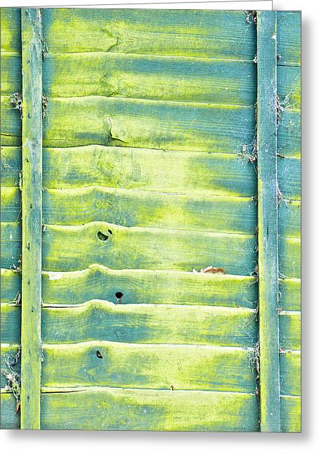 Moist Greeting Cards - Green fence Greeting Card by Tom Gowanlock