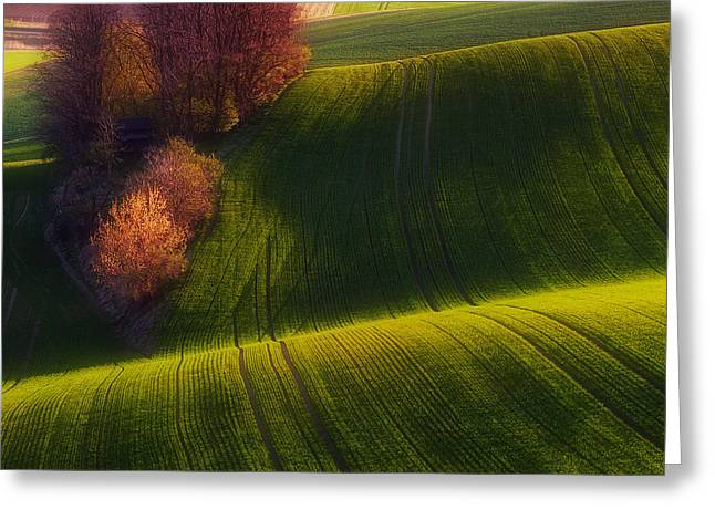 Moravia Greeting Cards - Green Fields Greeting Card by Piotr Krol (bax)