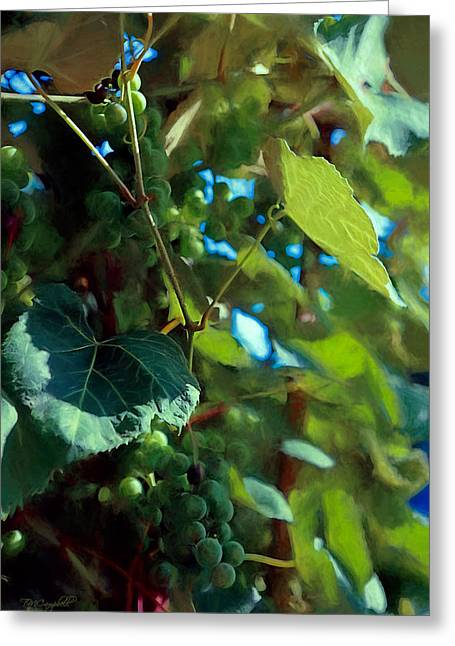 Grapevines Greeting Cards - Green Grapes in Arbor Greeting Card by Theresa Campbell
