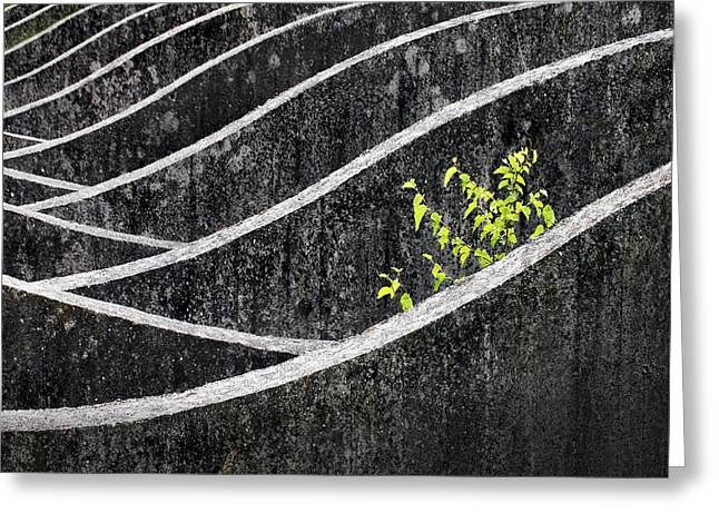 Concrete Greeting Cards - Green - Gray Greeting Card by Robert Semnic