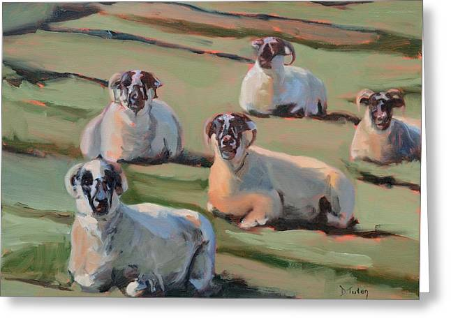 Scottish Blackface Greeting Cards - Green Hill Sheep at Rest Greeting Card by Donna Tuten