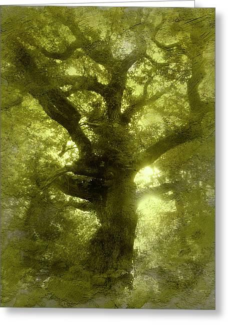 Green Oak Greeting Card by The Rambler
