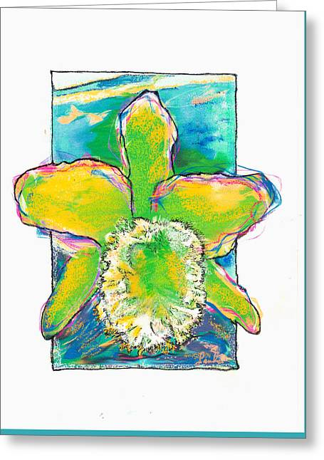 Orchid Green Cattleya Greeting Card by Sandra Swan