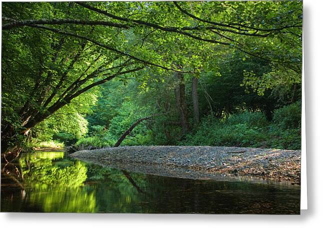 Summer Landscape Greeting Cards - Green River Greeting Card by Evgeni Dinev