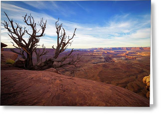 Green River Overlook Greeting Card by Edgars Erglis
