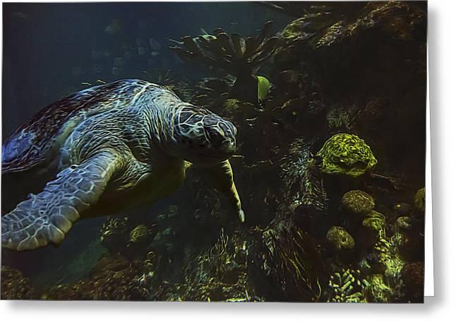 Aquarium Fish Greeting Cards - Green Sea Turtle 2 Greeting Card by Janet Fikar
