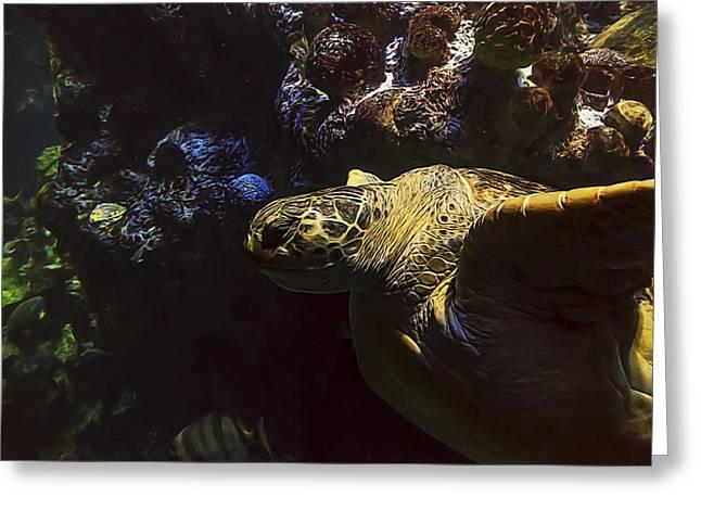 Aquarium Fish Greeting Cards - Green Sea Turtle 4 Greeting Card by Janet Fikar