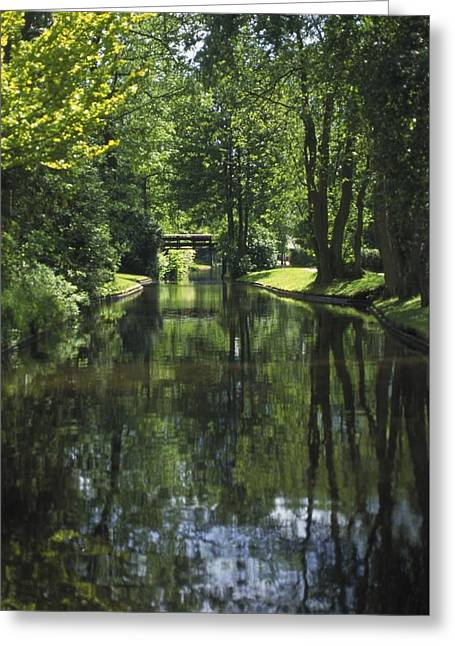 Beauty Greeting Cards - Green Trees Reflected In River Water Greeting Card by Gillham Studios