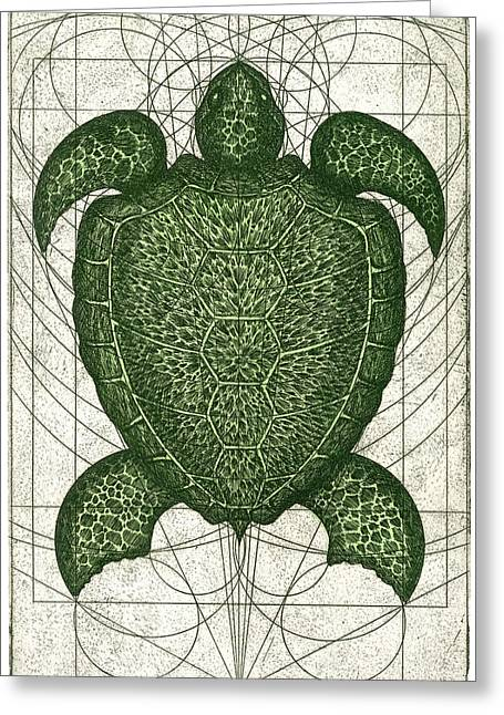 Turtle Shell Greeting Cards - Green Turtle Greeting Card by Charles Harden