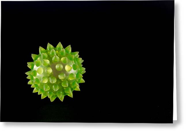 Microbiology Greeting Cards - Green Virus on Black Background Greeting Card by John Williams