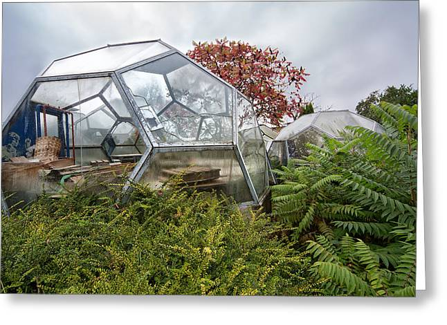 Greenhouse Effect Greeting Cards - Greenhouse Experiment - Urban Decay Greeting Card by Dirk Ercken