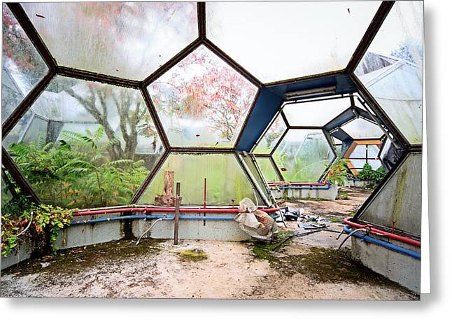 Abandoned Places Greeting Cards - Greenhouse From Out Of Space - Urban Exploration Greeting Card by Dirk Ercken