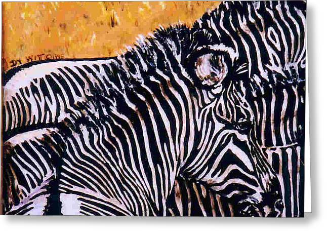 Zebra Colt Greeting Cards - Grevy Colt Greeting Card by Dy Witt