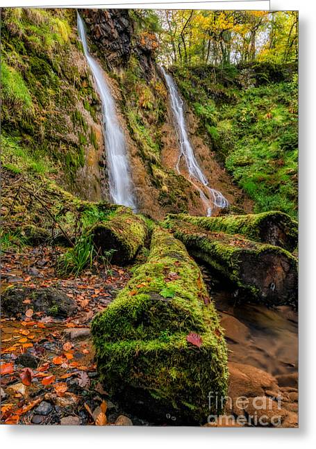 Grey Mares Tail Waterfall Greeting Card by Adrian Evans