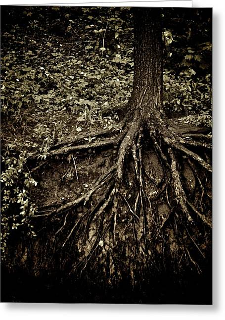 Tree Roots Greeting Cards - Grit Greeting Card by Odd Jeppesen