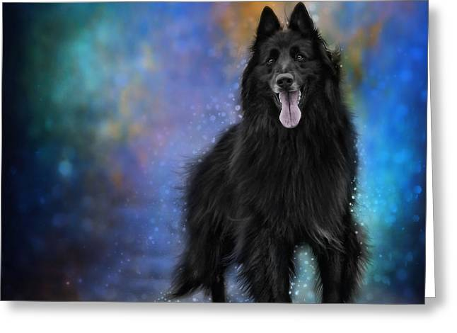 Recently Sold -  - Working Dog Greeting Cards - Belgian Sheepdog Artwork 4 Greeting Card by Wolf Shadow  Photography