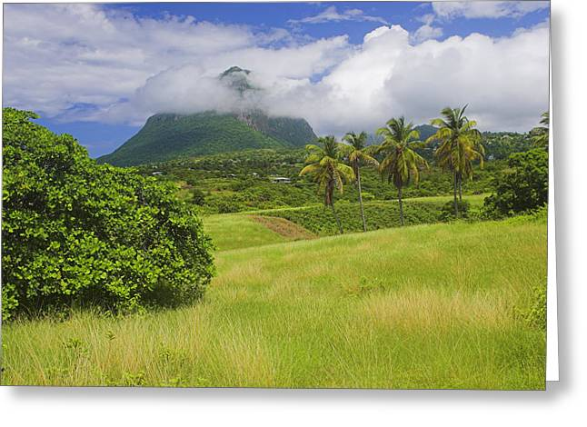 Lush Green Greeting Cards - Gros Piton-St Lucia Greeting Card by Chester Williams