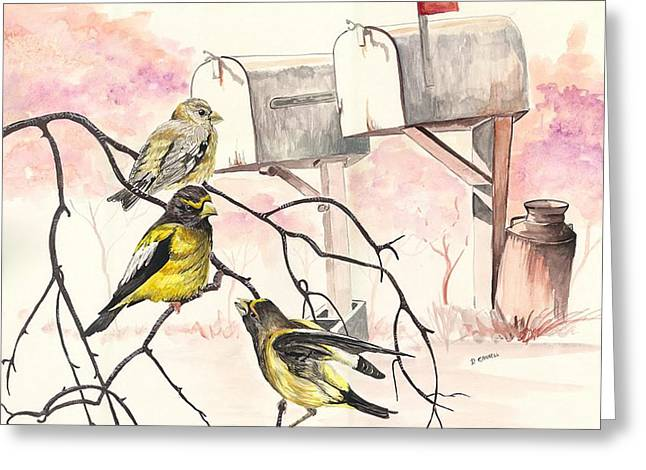 Wildlife Celebration Greeting Cards - Grosbeaks Greeting Card by Darren Cannell