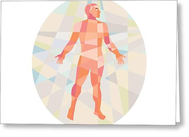 Geometric Artwork Greeting Cards - Gross Anatomy Male Oval Low Polygon Greeting Card by Aloysius Patrimonio