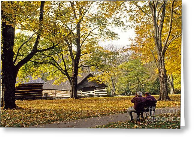 Hermitage Plantation Greeting Cards - Grounds of the Hermitage in Tennessee Greeting Card by Nancy Hoyt Belcher