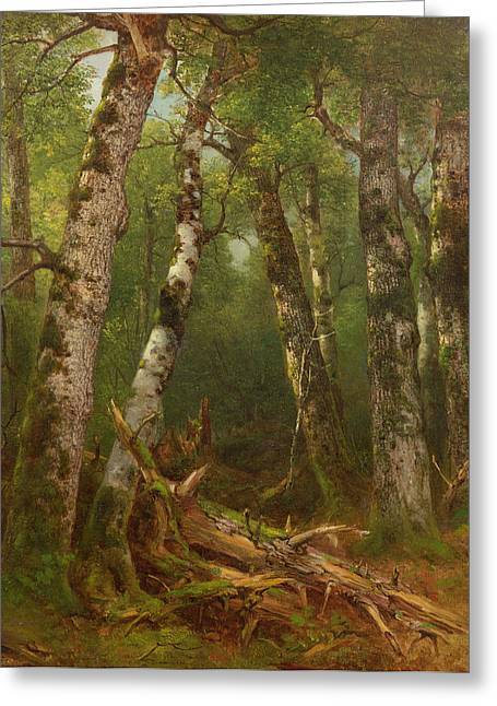 Forest Floor Paintings Greeting Cards - Group of Trees Greeting Card by Asher Brown Durand