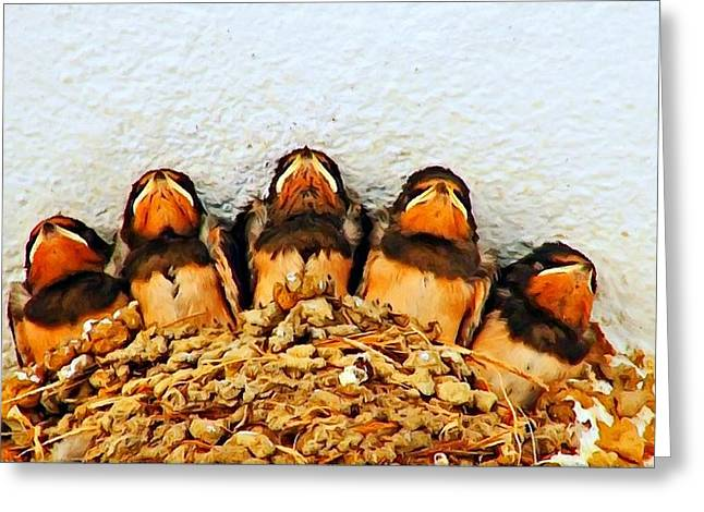 Mud Nest Greeting Cards - Group of young swallows in the nest digitally painted Greeting Card by Ken Biggs