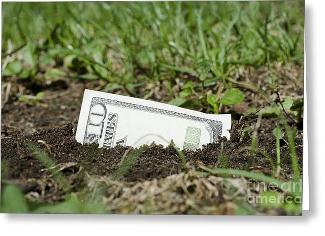 Growing money Greeting Card by Mats Silvan